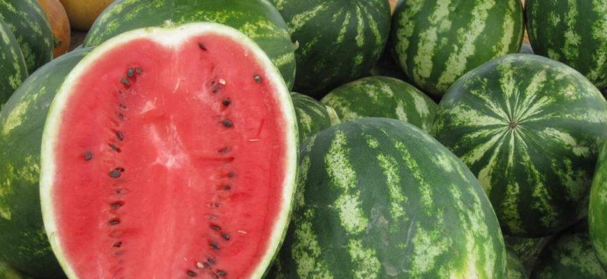 Melouny se dělí do dvou hlavních skupin. Tu první reprezentuje vodní meloun. Ten je asi (v ČR) nejznámější a nejčastěji konzumovaný.