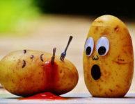 Patří brambory na dietní jídelníček? Ty vařené (ideálně ve slupce a v páře), mají jen okolo 70 kalorií (kcal) na 100 gramů. To je méně než má rýže nebo těstoviny. Takové brambory se určitě hodí i při hubnutí. Bramborové hranolky nebo jiné přílohy z brambor už mají ale příliš mnoho kalorií.